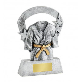 Trophée kimono resine