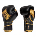 Gants de boxe Titan Métal boxe